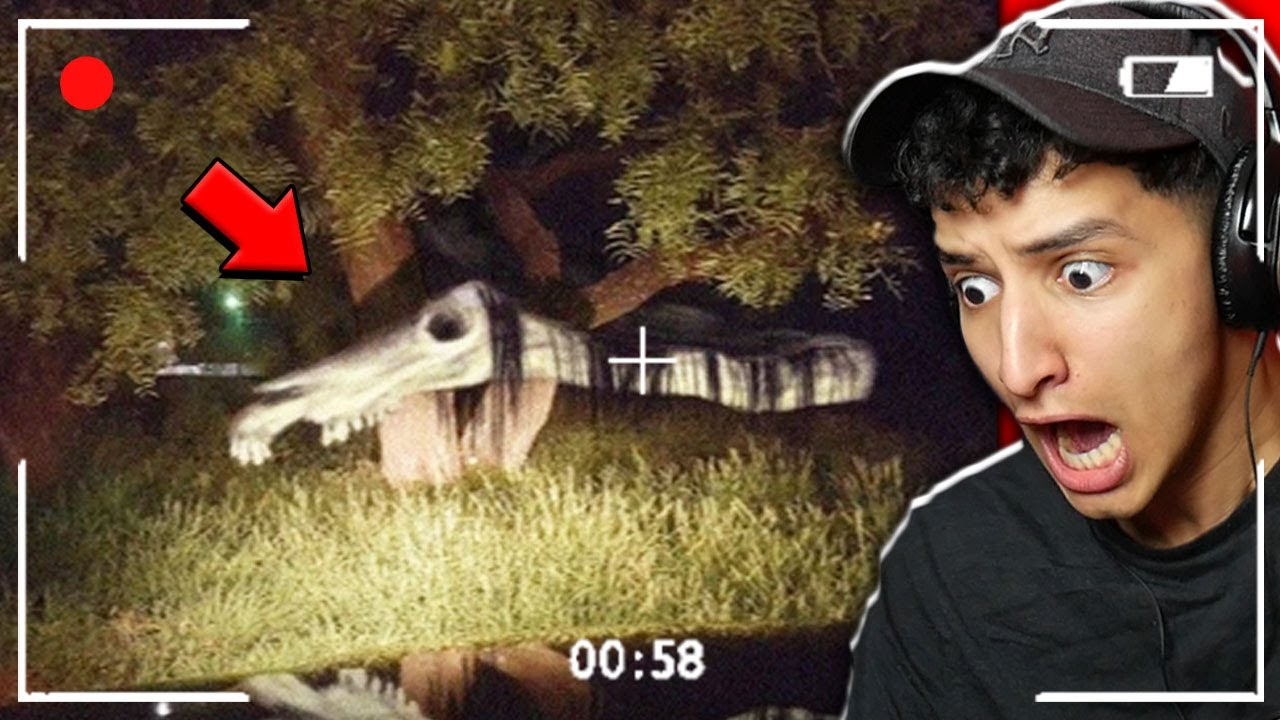 LONG HORSE SPOTTED IN REAL LIFE... *SCARY*
