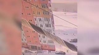 упала с 9 этажа, отряхнулась и ушла. Чудесная жуть. Real video