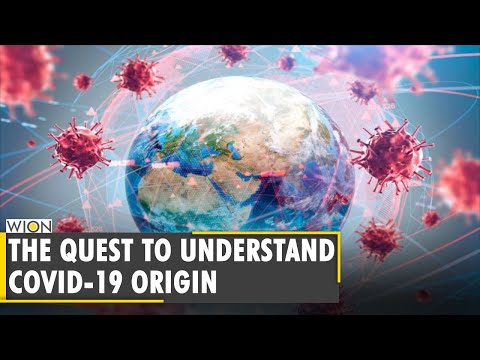 COVID-19 origin probe: Indian scientist explains terms used in online discussion | Monali Rahalkar