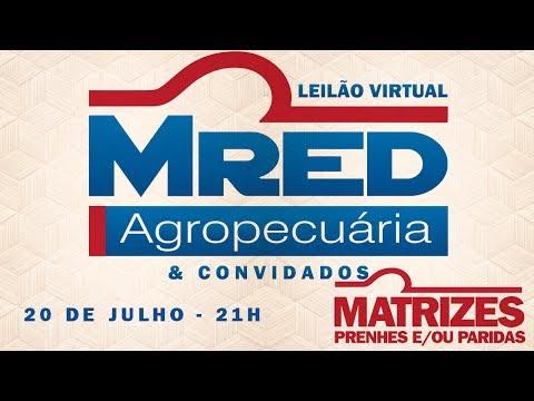 Lote 08 (MRED 261 / 443 / 464 / 510 / 570)