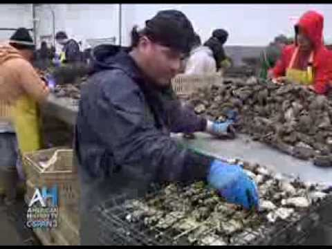 C-SPAN Cities Tour - Olympia: Washington's Oyster Industry And The Olympia Oyster