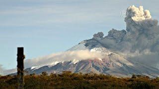 Эквадор: активисты спасают брошенных из-за вулкана животных (новости)(, 2015-09-08T07:55:31.000Z)