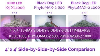 Black Dog LED vs. FUNDAȚIA LED 3-Bay 4X4 Creșterea consumului de canabis Side-by-Side-by-Side
