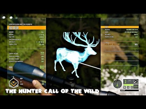 theHunter Call of the wild Barry The Bison