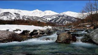 白馬山麓に春の訪れ・4K撮影