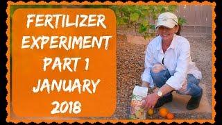Citrus Tree Fertilizer - Part 1 Of Many - Grapefruit & Orange Tree Care