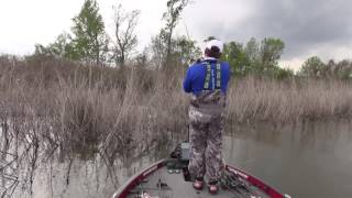 Video 2017 Bassmaster Classic with Greg Hackney, Cliff Crochet and Ryan Lavigne download MP3, 3GP, MP4, WEBM, AVI, FLV September 2017