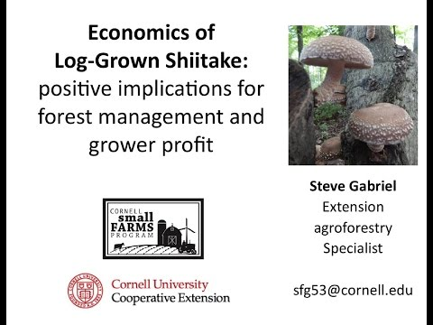 Economics of log-grown Shiitake mushrooms