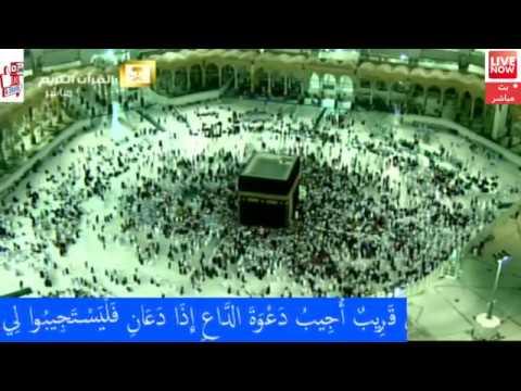 Makkah Live HD |  قناة القران الكريم | بث مباشر من مكة المكرمة الان LIVE STREAM .mecca live