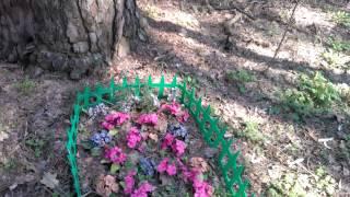 Кладбище домашних животных в Лесном массиве. Киев