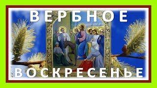 #Вербное воскресенье 2019 с праздником вас! Видео поздравление с Вербным воскресеньем