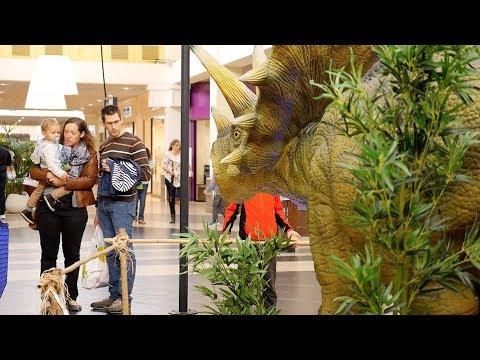 La ville du bois exposition dinosaure septembre 2017 youtube - Desjoyaux la ville du bois ...