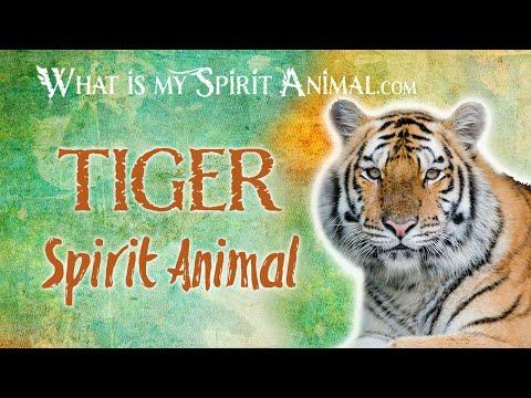 tiger-spirit-animal-|-tiger-totem-&-power-animal-|-tiger-symbolism-&-meanings