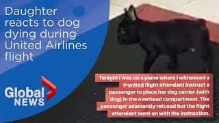 United passenger reacts to finding puppy dead after being stored in overhead bin