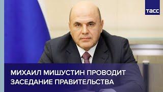 Михаил Мишустин проводит заседание правительства