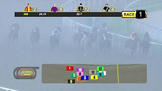 Vidéo de la course PMU CLASS 5- 1000 M.