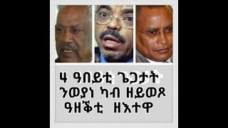 Eritrea, 4 ዓበይቲ ጌጋታት ንወያነ ካብ ዘይወጾ ዓዘቕቲ  ዘእተዋ