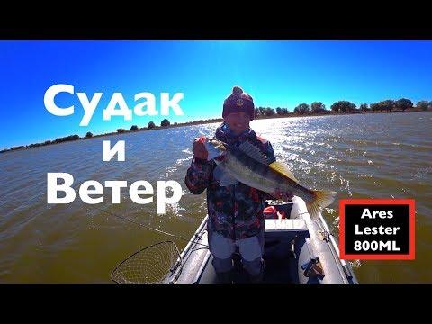 видео: Судак и Ветер -День Чудесный...!!! ares lester boron 800ml