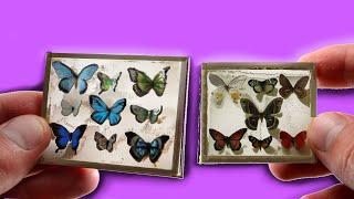 DIY Miniature Framed Butterflies [realistic]
