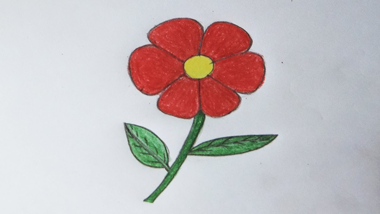 100+ Flower Drawings For Kids With Colour - Tropical Flower Coloring ...