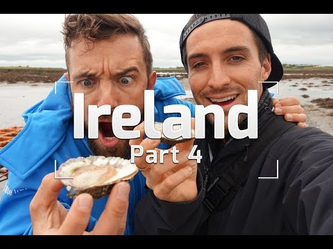 GALWAY IRELAND - BEST OYSTERS IN THE WORLD