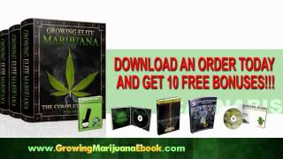 Growing Marijuana Indoors | Outdoors Tips, E-Book Help for Weed Growing