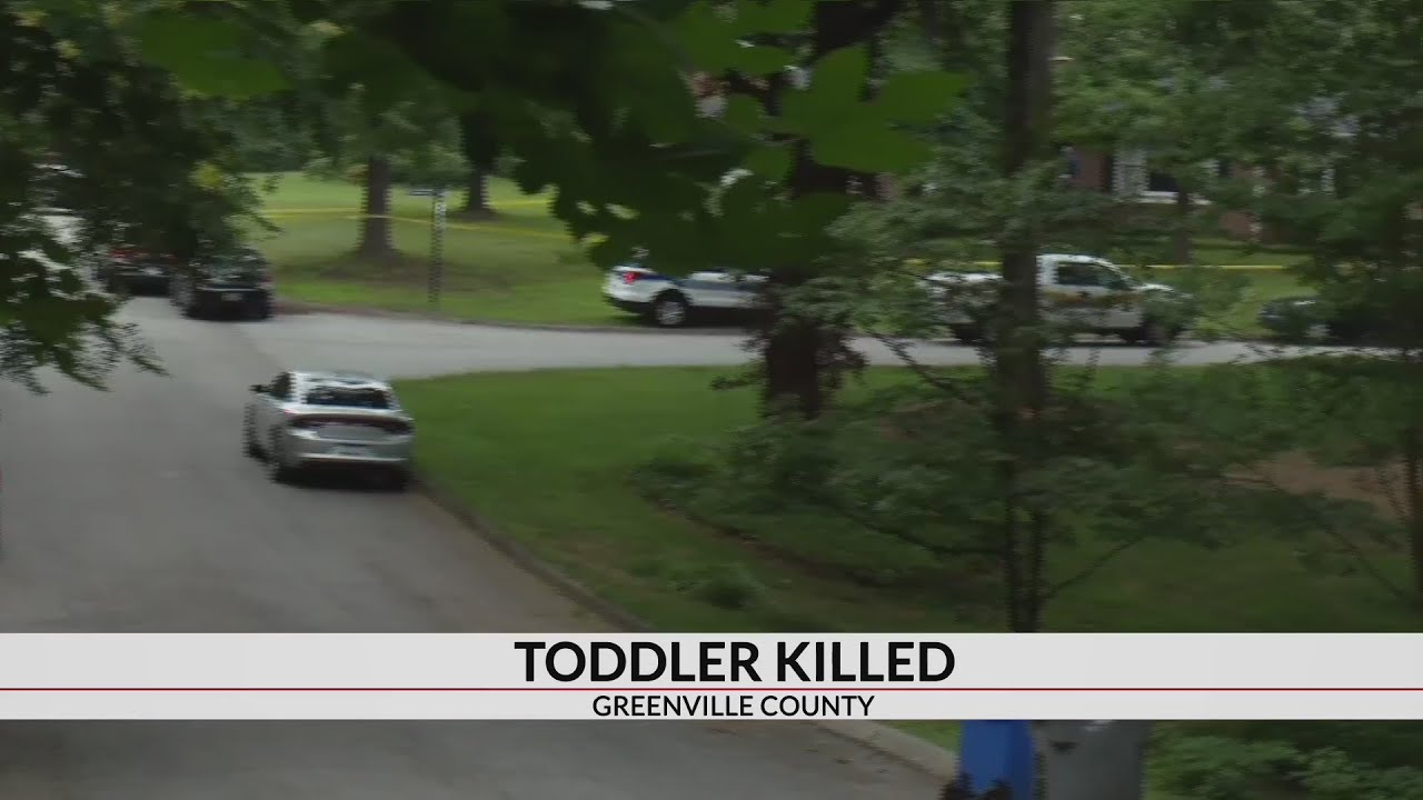 2-year-old boy dies after accidentally shooting himself in Greenville Co.