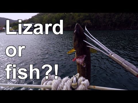 Spearfishing a Lizardfish in Martinique - Episode 12