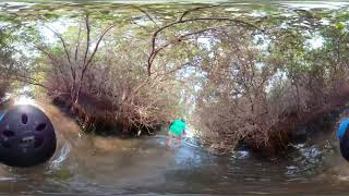 360 Walk through Ras Al Khor Mangroves Part 2
