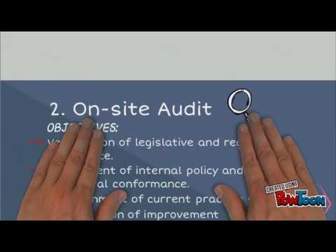 Process Of Environmental Audit