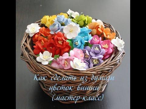Цветы Вишни – Купить Цветы Вишни недорого из Китая на