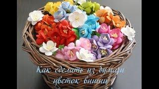 Как сделать из бумаги цветок вишни (мастер-класс) Скрапбукинг.(Это видео расскажет о том, как можно экономить на материалах и делать цветы вишни своими руками. Этот цветок..., 2015-05-10T12:18:12.000Z)