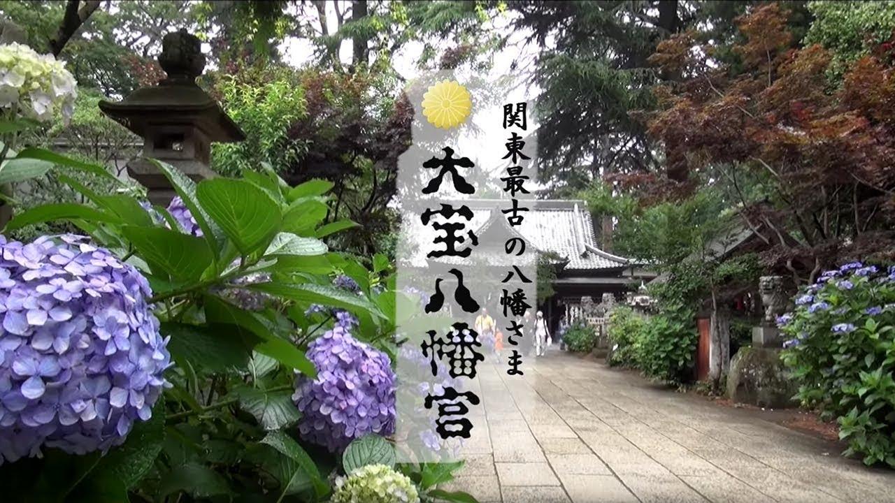 茨城県下妻市-関東最古の八幡様:大宝八幡宮 あじさい祭編