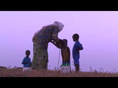 BBC World: African Business Report. Milk production in Senegal
