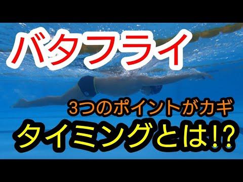 【水泳】【初級】バタフライのタイミングとは⁉