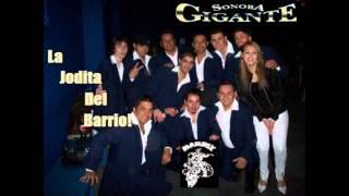 Lo Que Yo Te Di-Sonora Gigante [Karla Ameri] ))Uma & Papá!!((