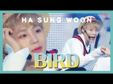 [Solo Debut] HA SUNG WOON - BIRD , 하성운 - BIRD Show Music Core 20190302