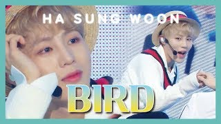 [Solo Debut] HA SUNG WOON - BIRD , 하성운 - BIRD Show Music core 20190302