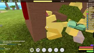 PVP in roblox Booga Booga (killing 2 god guys)
