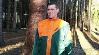 работа в Чехии в лес на валку деревьев ! - Бесплатная вакансия - Aerojobs