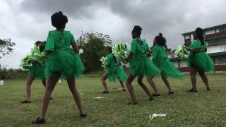 Penal Secondary School Sports 2017 Cheerleading Leatherback House