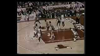Fat Lever (31pts/16rebs/12asts/6stls) vs. Bulls (1988)