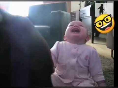 لطیفے ہی لطیفے : مزے مزے کے لطیفوں کے لئے یہ  ویڈیو  دیکھیں اور  شیئر کریں