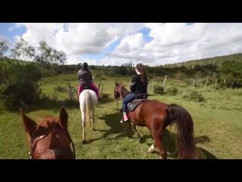 Horseback Riding in Uruguay -  Excellence Turismo