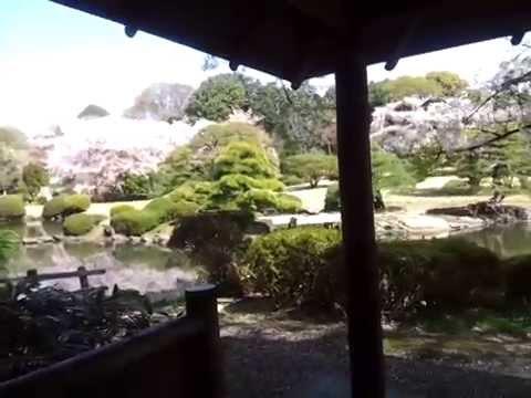 Il giardino delle parole il luogo reale shinjuku gyoen youtube - Il giardino delle parole libro ...
