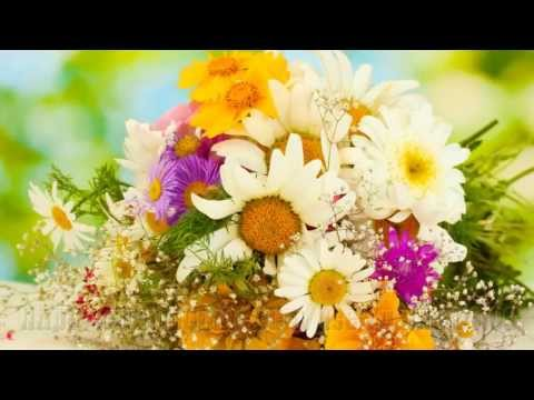 Полевые Цветы!  Полевые Цветы!  Творчество - это Счастье..