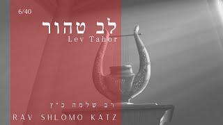 Lev Tahor – לב טהור Rav Shlomo Katz 6/40
