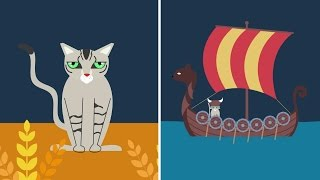 What do Kitties and Vikings Have in Common?