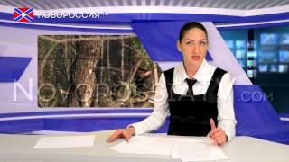 """Новости на """"Новороссия ТВ"""" 15 июня 2015 года"""