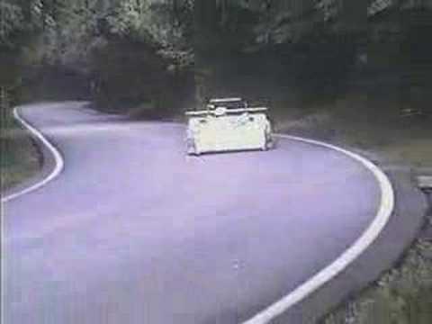 car hits deer sends